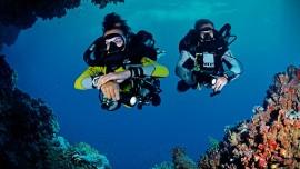 Bundles Easydivers dive center 1