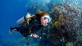 Open water Diver Easydivers dive center