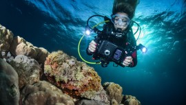 Photo and video specialty easydivers dive center algarve