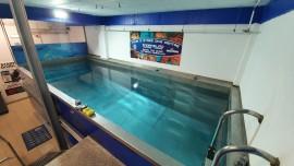 indoor tank easydivers piscina interior